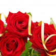 Festive red roses border — Stock Photo #3042305