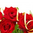 Festive red roses border — Stock Photo