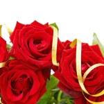 Festive red roses border — Stock Photo