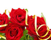 Festive red roses border — Foto de Stock