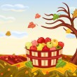 Stock Vector: Rich apple harvesting in autumn