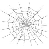 Vector Spider web on white — Stock Vector
