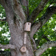Birdhouse — Stockfoto #2936810