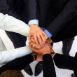    group of business making a pile of hands in a l - Stock Photo