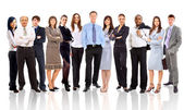 Young attractive business - the elite business team — Stok fotoğraf