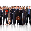 Young attractive business - the elite business team — Stock Photo #4233283