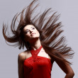 Photo of beautiful woman with magnificent hair — Stock Photo #4813735