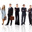 Young attractive business - the elite business team — Stock Photo #4843335