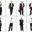 Isolated full body portrait of a senior businessman - Stock Photo