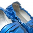 Royalty-Free Stock Photo: Shiny Shoes
