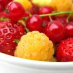 Fresh Berries — Stock Photo #2764890