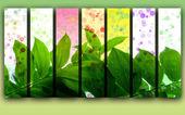 Creative Summer Background — Stock Photo