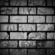 Dark Brick Background — Stock Photo