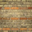 Old Brick Wall — Foto Stock #3549669