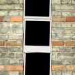 Blank Photos on Brick Wall — Stock Photo