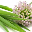 spring onion&quot — Stock Photo