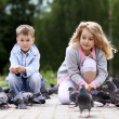 Children playing with doves — Stock Photo #3645853