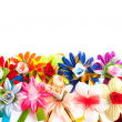Background from flowers — Stock Photo
