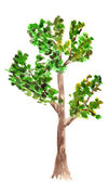 Drawing of tree — Stock Photo