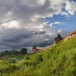 Royalty-Free Stock Photo: Suzdal panorama