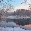 Winter evening landscape — Stock Photo
