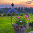 Basket of flowers — Stock Photo