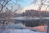 Winter evening landscape — Stock fotografie