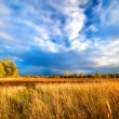 Rural landscape - Stockfoto