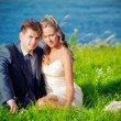 Wedding couple on grass — Stock Photo #3182482