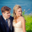 Wedding couple on grass — Stock Photo #3182485