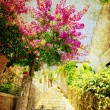 Street of Herceg Novi - Stock Photo
