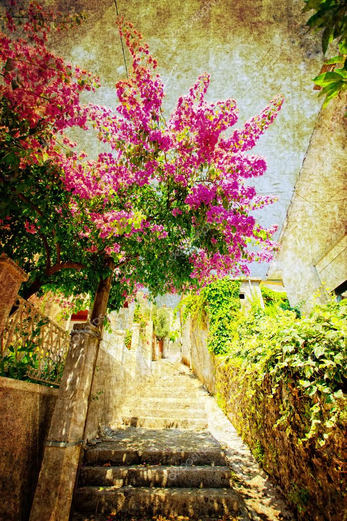 Small street with violet oleander in coastal town Herceg Novi in Montenegro — Stock Photo #3759794