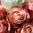Roses bouquet — Stock Photo #3775902