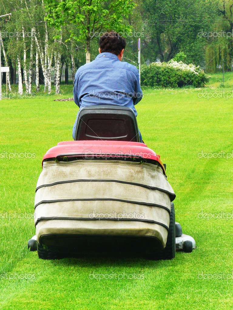 Person shears a lawn-mower lawns to an equal surface  Stock Photo #3146553