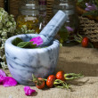 Herbal medicine :rose - Foto Stock
