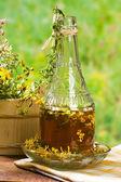 Herbal medicine :Hypericum — Stock Photo