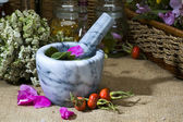 Herbal medicine :rose — Stock Photo