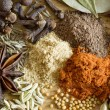 Spice: pepper anisetree cumin fennel cloves - 图库照片