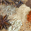 Spice: pepper anisetree cumin fennel cloves - Stock Photo