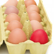 Stock Photo: Egg box, differ one.