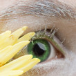 Close-up of eye — Stock Photo