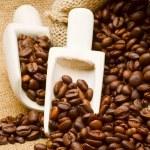Coffee beans — Stock Photo #4366524