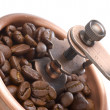 Coffee grinder close-up — Stock Photo #4371046