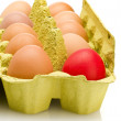 Egg box, differ one. — Stock Photo