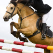 Stock Photo: Horse with jokey jumping over the fence, detail