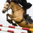 Horse with jokey jumping over the fence, detail - Photo