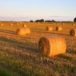 First sunlight on bales of straw in the field - Stock Photo