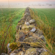 Stock Photo: Sunrise at field and stone wall vanishing in fog, HDR