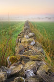 Sunrise at field and stone wall vanishing in fog, HDR — Stock Photo