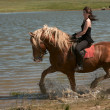 Girl on a horse — Stock Photo #3112800